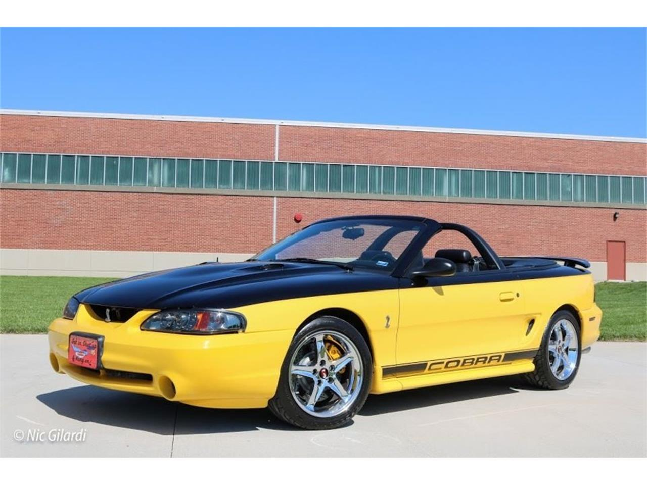 Large Picture of '98 Mustang - MHV9