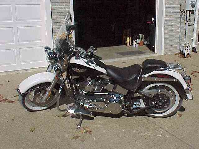 Picture of '05 Softail - MJ9N