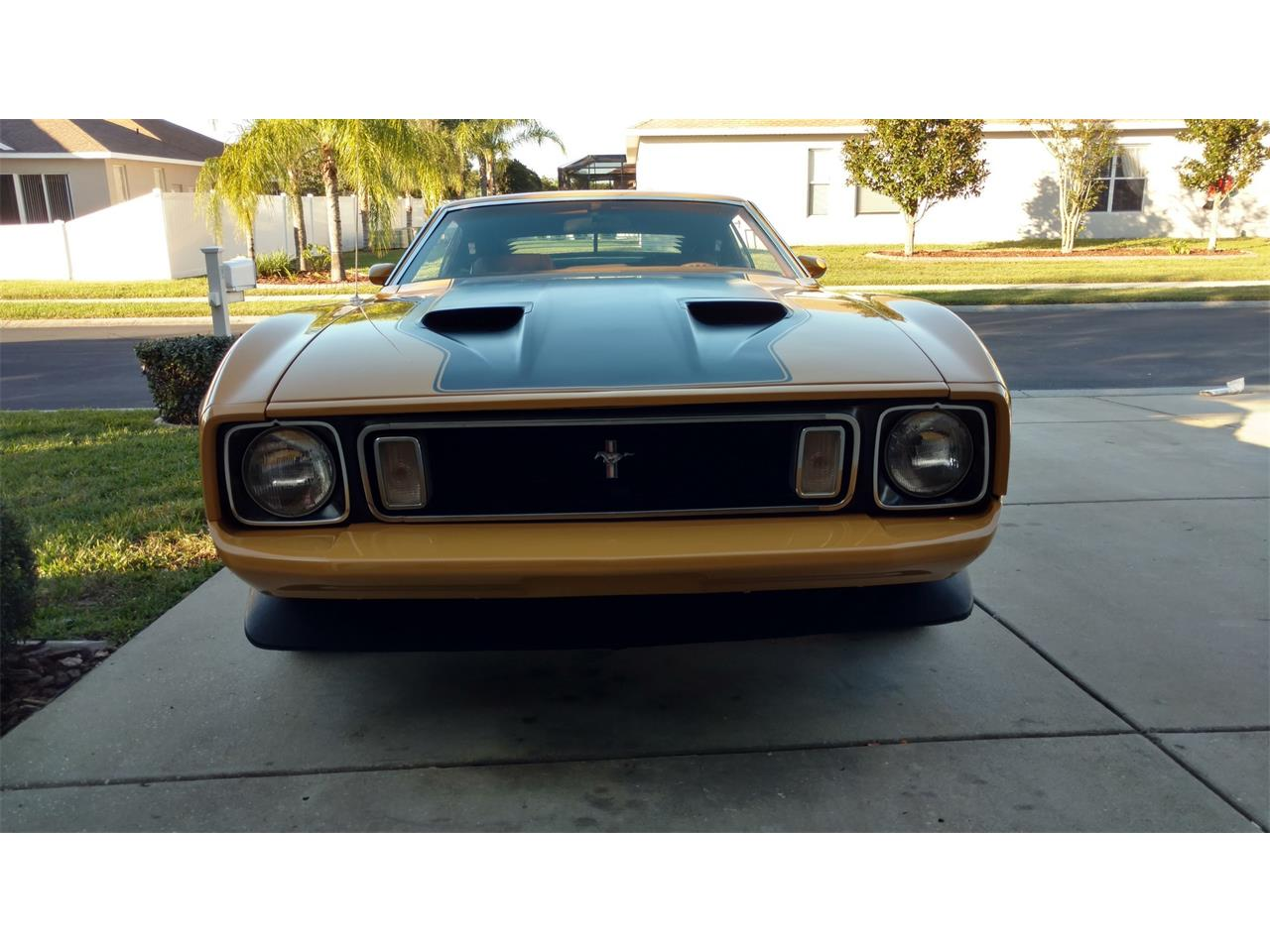 Large Picture of '73 Mustang Mach 1 - MKMQ