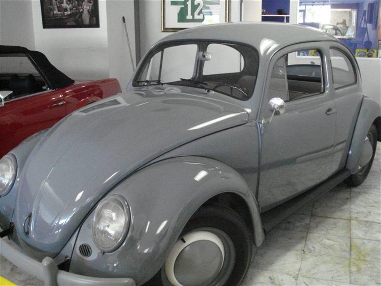 For Sale: 1958 Volkswagen Beetle in Pompano Beach, Florida