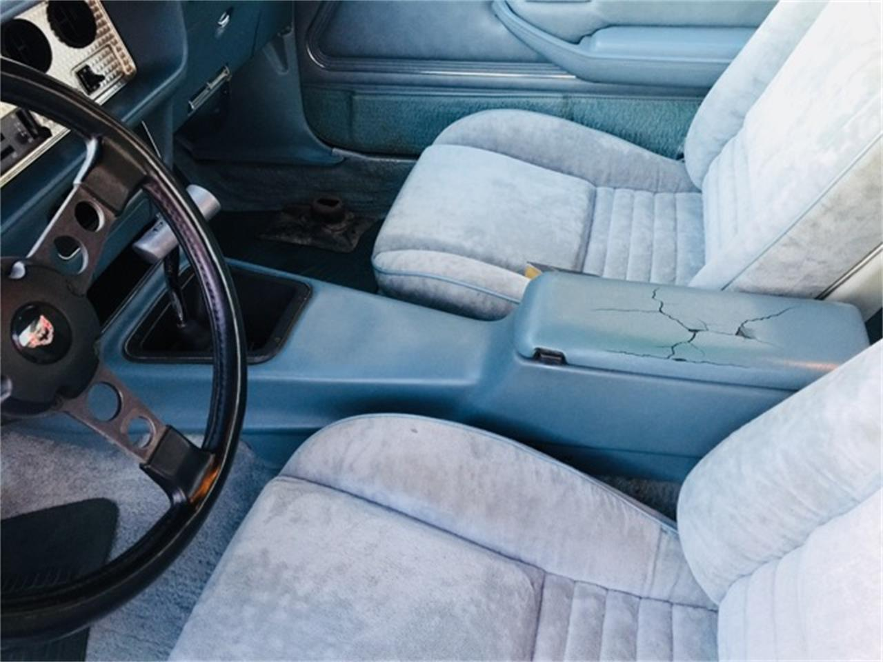 Large Picture of 1978 Pontiac Firebird Trans Am Offered by Red Line Auto Sports - MIJT
