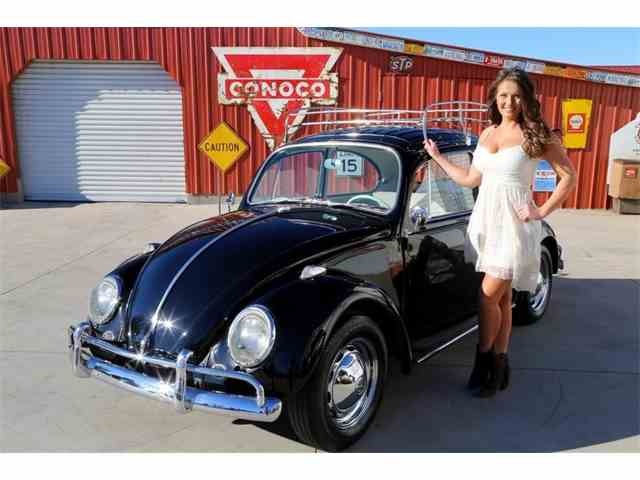 Picture of '65 Beetle - MMLU