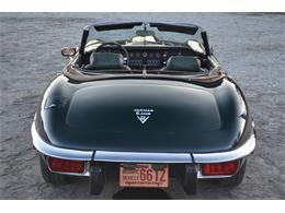 Picture of 1974 Jaguar E-Type - MMOP