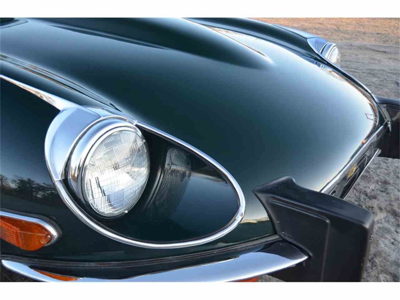 Large Picture of '74 E-Type - MMOP