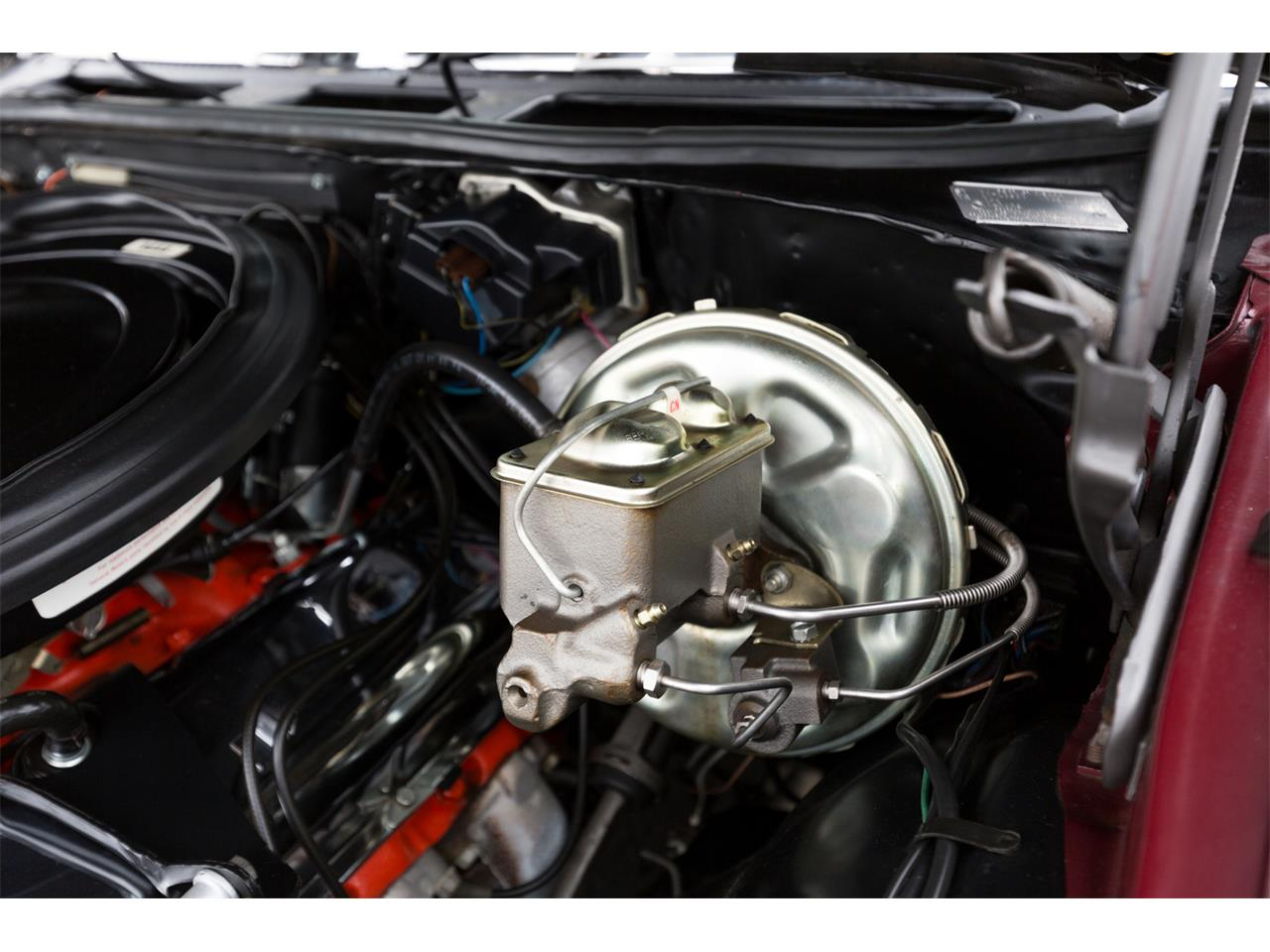 Large Picture of 1970 Chevrolet Chevelle SS Offered by Specialty Sales Classics - MN2G