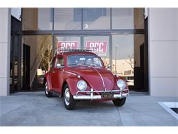 Picture of Classic 1962 Beetle located in Irvine California Offered by Radwan Classic Cars - MN4G