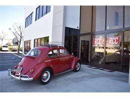 Picture of '62 Volkswagen Beetle - $19,900.00 - MN4G