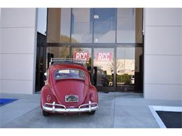 Picture of 1962 Volkswagen Beetle - $19,900.00 Offered by Radwan Classic Cars - MN4G