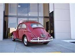 Picture of 1962 Volkswagen Beetle located in California - $19,900.00 Offered by Radwan Classic Cars - MN4G