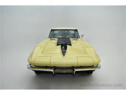Picture of '67 Corvette - MNH0