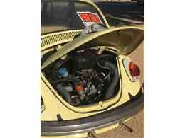 Picture of '69 Beetle - MI6V