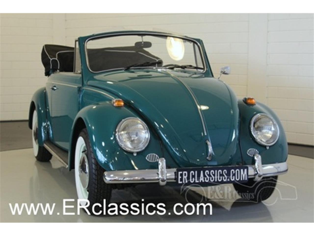 Large Picture of '66 Beetle - MNPR