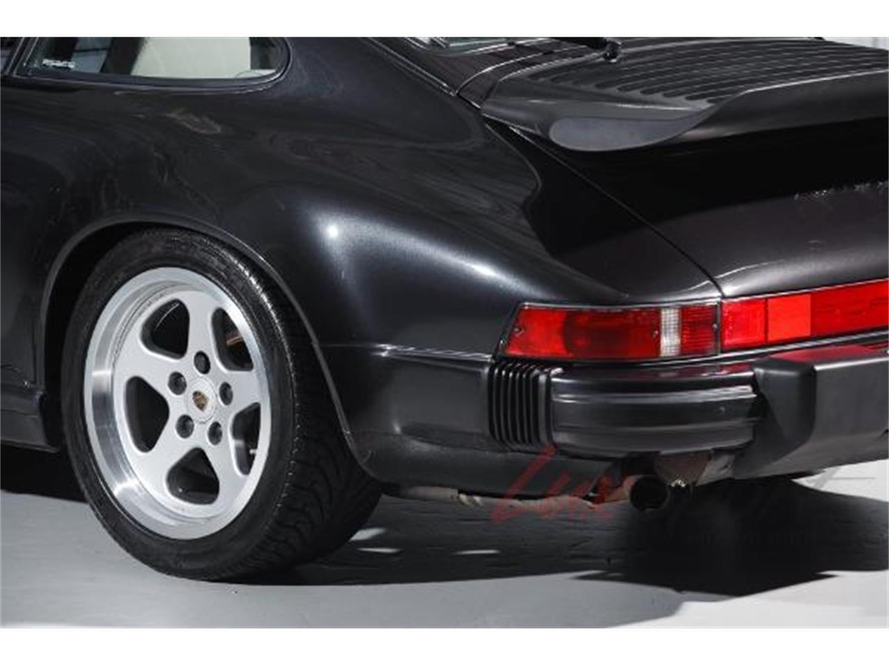 Large Picture of '89 911 Carrera - MNZI