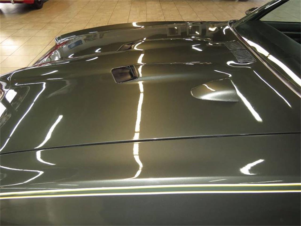 Large Picture of '69 LeMans - MOBN