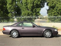 Picture of 1992 SL500 - MOE6