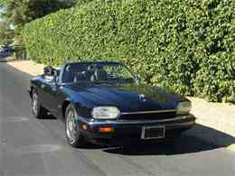 Picture of '96 XJS - MOEO