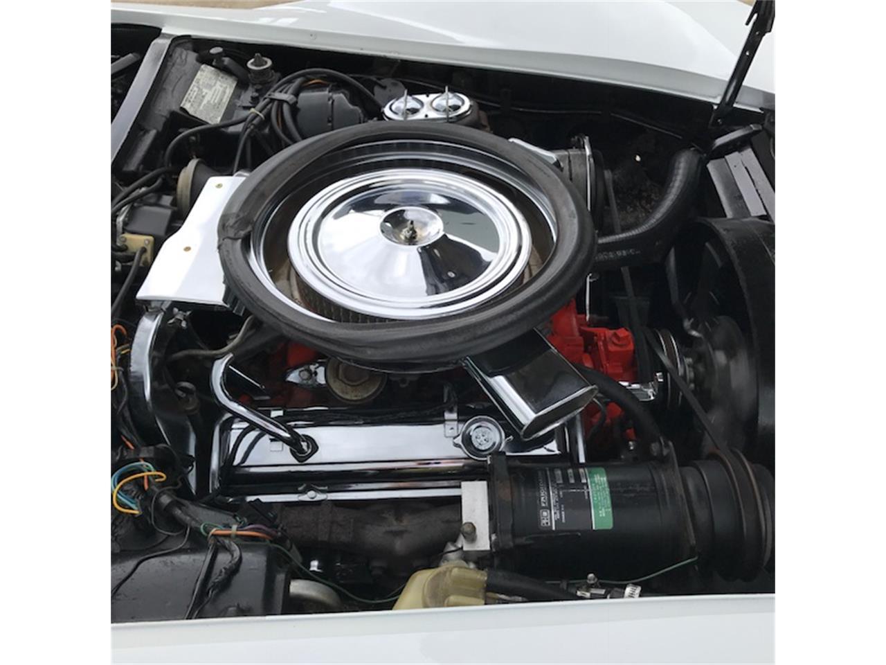 Large Picture of '73 Corvette - MOJH
