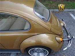 Picture of '67 Beetle - MTLL