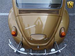 Picture of 1967 Beetle - MTLL