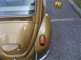 Picture of Classic '67 Beetle - MTLL