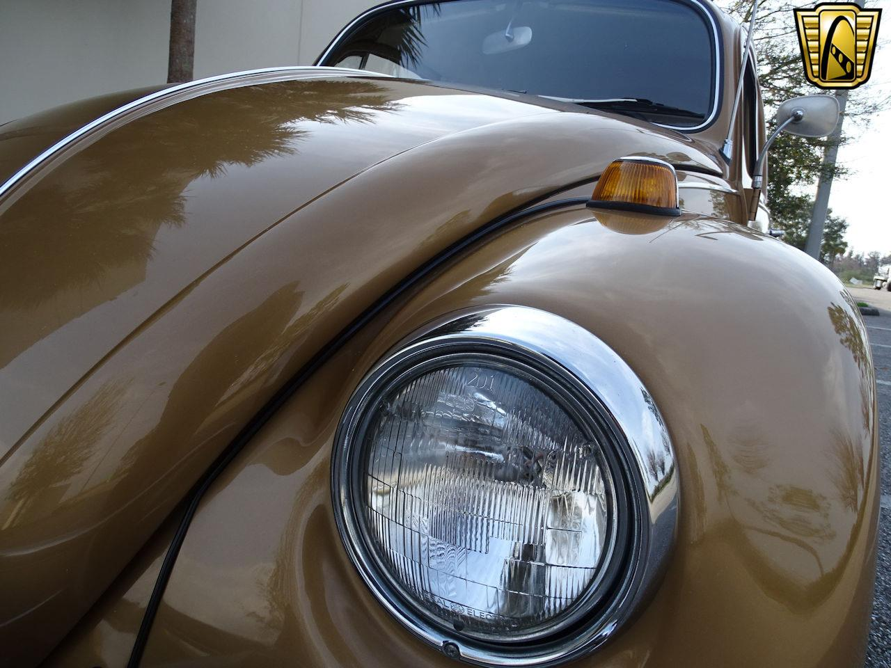Large Picture of 1967 Beetle - MTLL