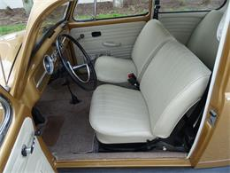 Picture of Classic 1967 Beetle located in Ruskin Florida - $18,995.00 Offered by Gateway Classic Cars - Tampa - MTLL