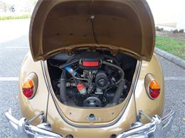 Picture of Classic '67 Beetle located in Ruskin Florida - MTLL