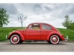 Picture of '64 Beetle - MTLO