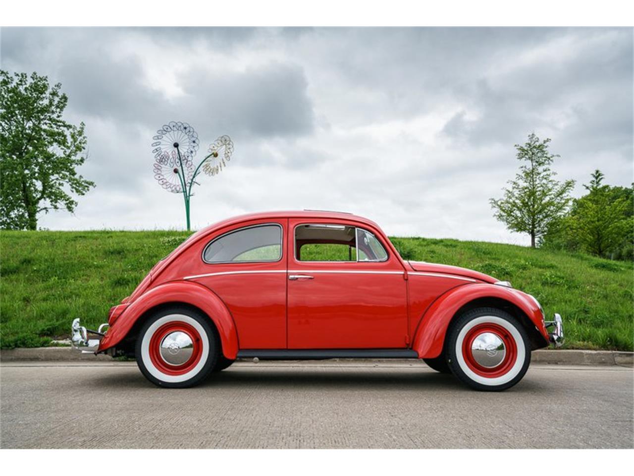 Large Picture of 1964 Volkswagen Beetle - MTLO