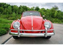 Picture of 1964 Volkswagen Beetle - $17,500.00 Offered by Fast Lane Classic Cars Inc. - MTLO