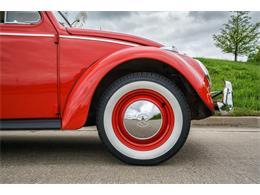 Picture of Classic 1964 Volkswagen Beetle - MTLO