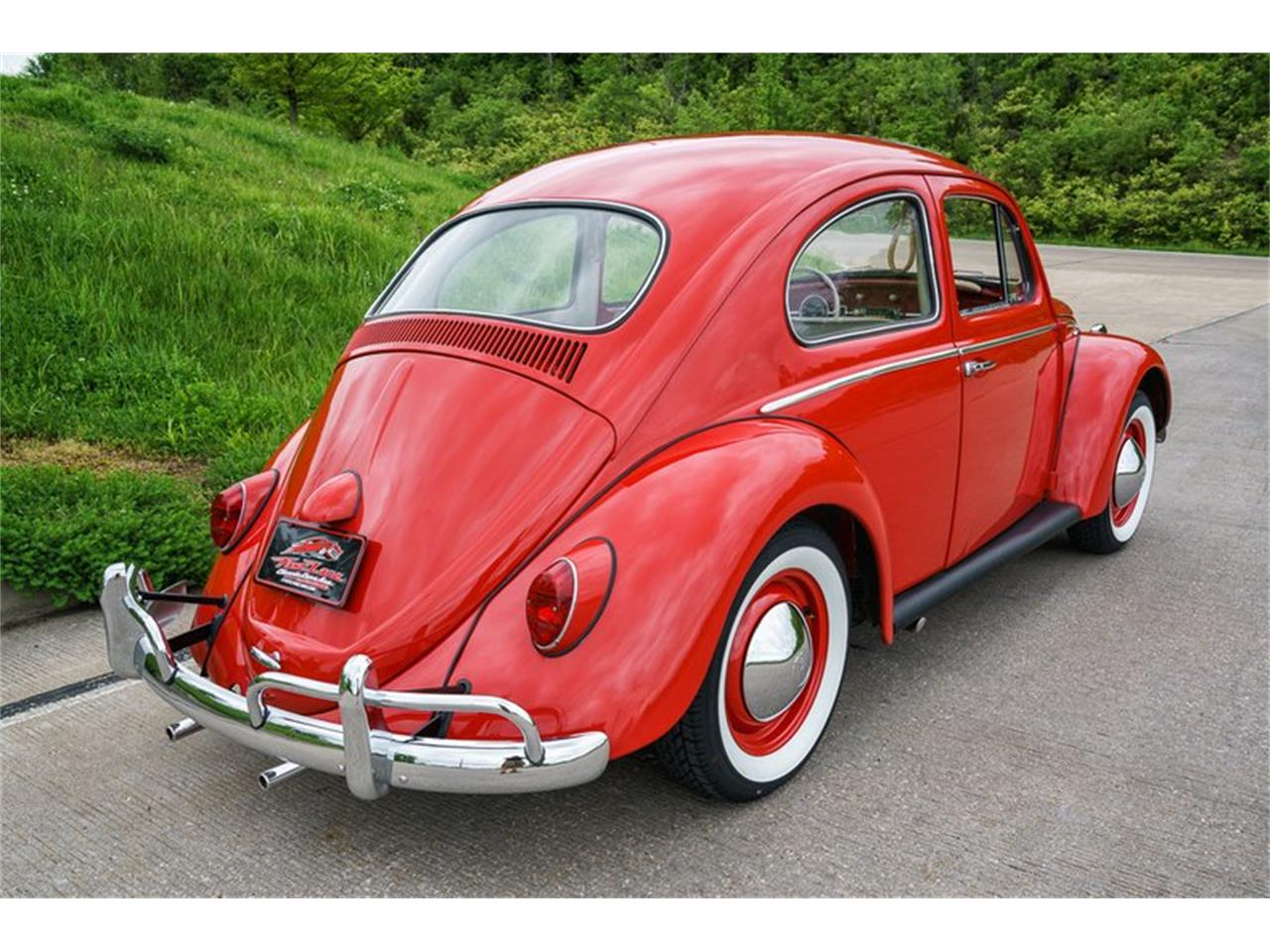 Large Picture of Classic 1964 Beetle located in St. Charles Missouri Offered by Fast Lane Classic Cars Inc. - MTLO