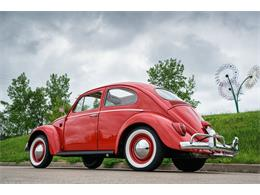 Picture of Classic 1964 Beetle located in St. Charles Missouri - $17,500.00 Offered by Fast Lane Classic Cars Inc. - MTLO