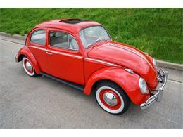 Picture of 1964 Volkswagen Beetle - MTLO
