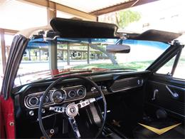 Picture of Classic '66 Mustang located in scottsdale Arizona Offered by Classic Car Investments LLC - MTOM