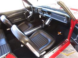 Picture of 1966 Mustang located in scottsdale Arizona - $29,500.00 Offered by Classic Car Investments LLC - MTOM