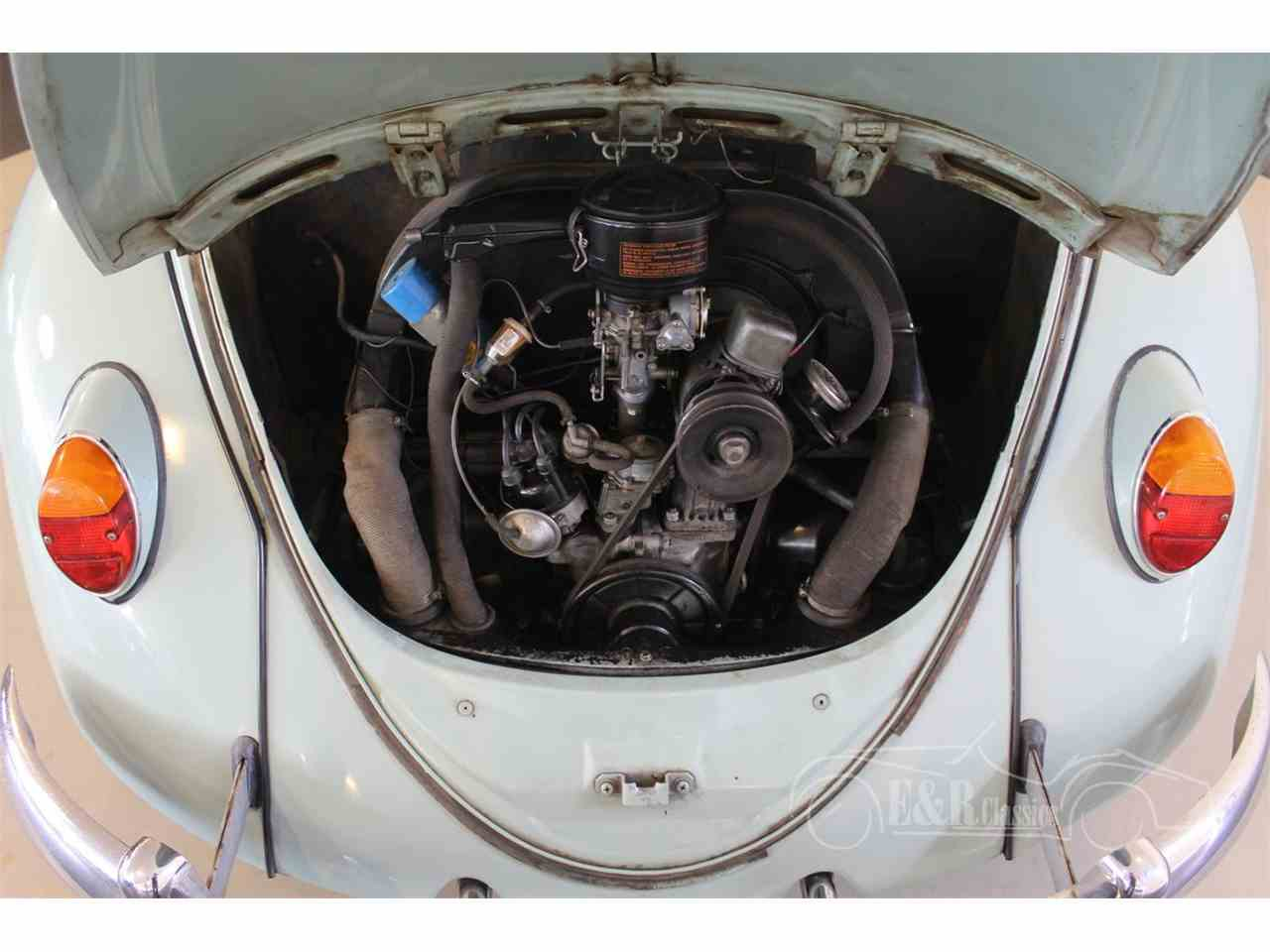 Large Picture of '65 Beetle - MTUK