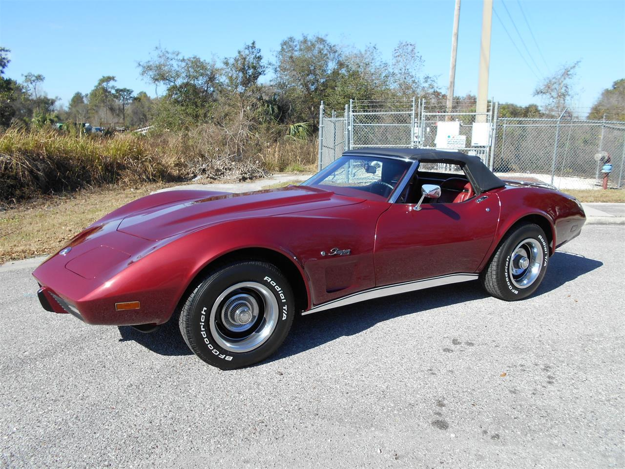 Large Picture of '75 Chevrolet Corvette - MUDY