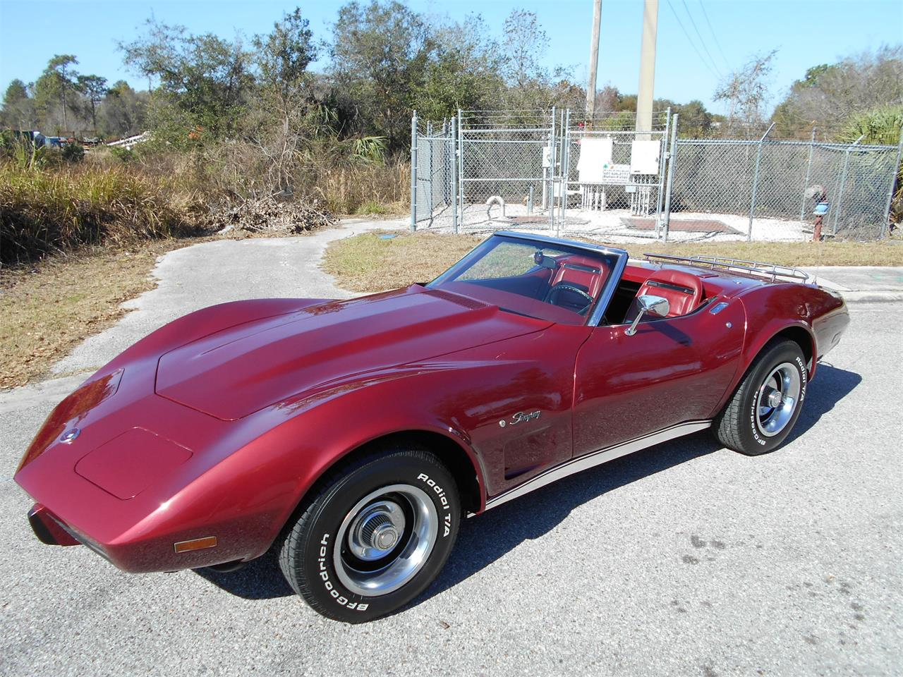 Large Picture of 1975 Chevrolet Corvette - MUDY