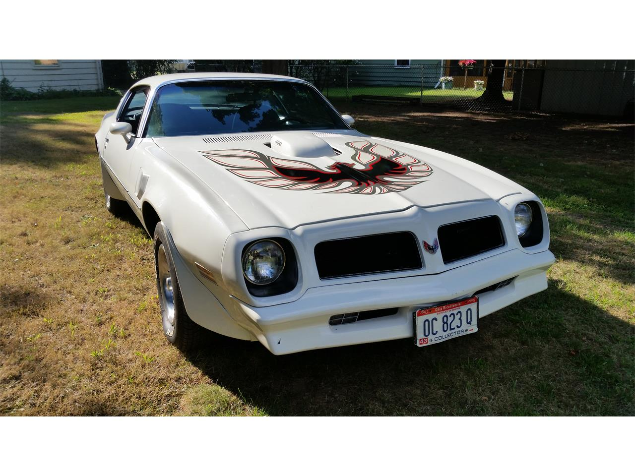 Large Picture of '76 Firebird Trans Am - MVY9