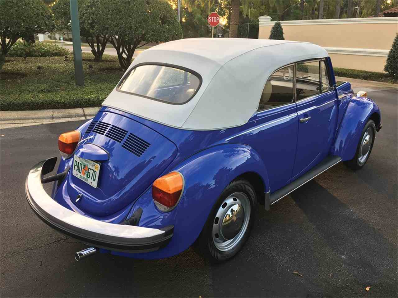 Large Picture of '78 Beetle - MWSG