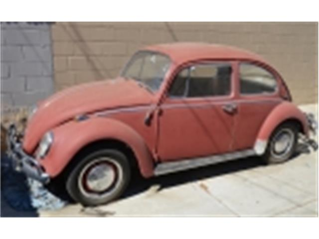 Picture of '66 Beetle - MX4Z