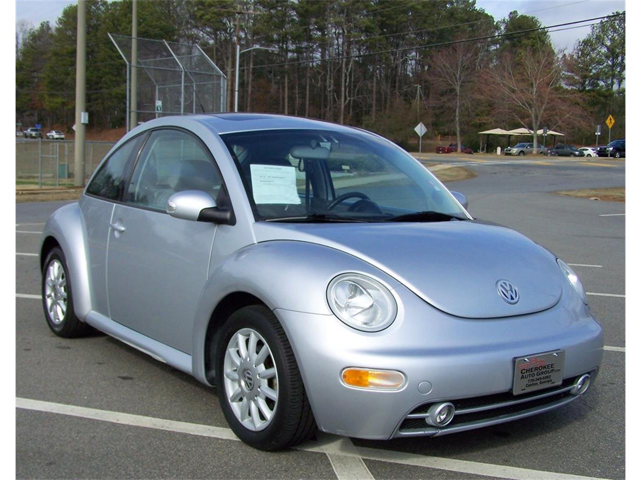 Large Picture Of 04 Beetle Mqo2