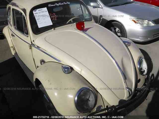 Picture of '65 Beetle - MYNB