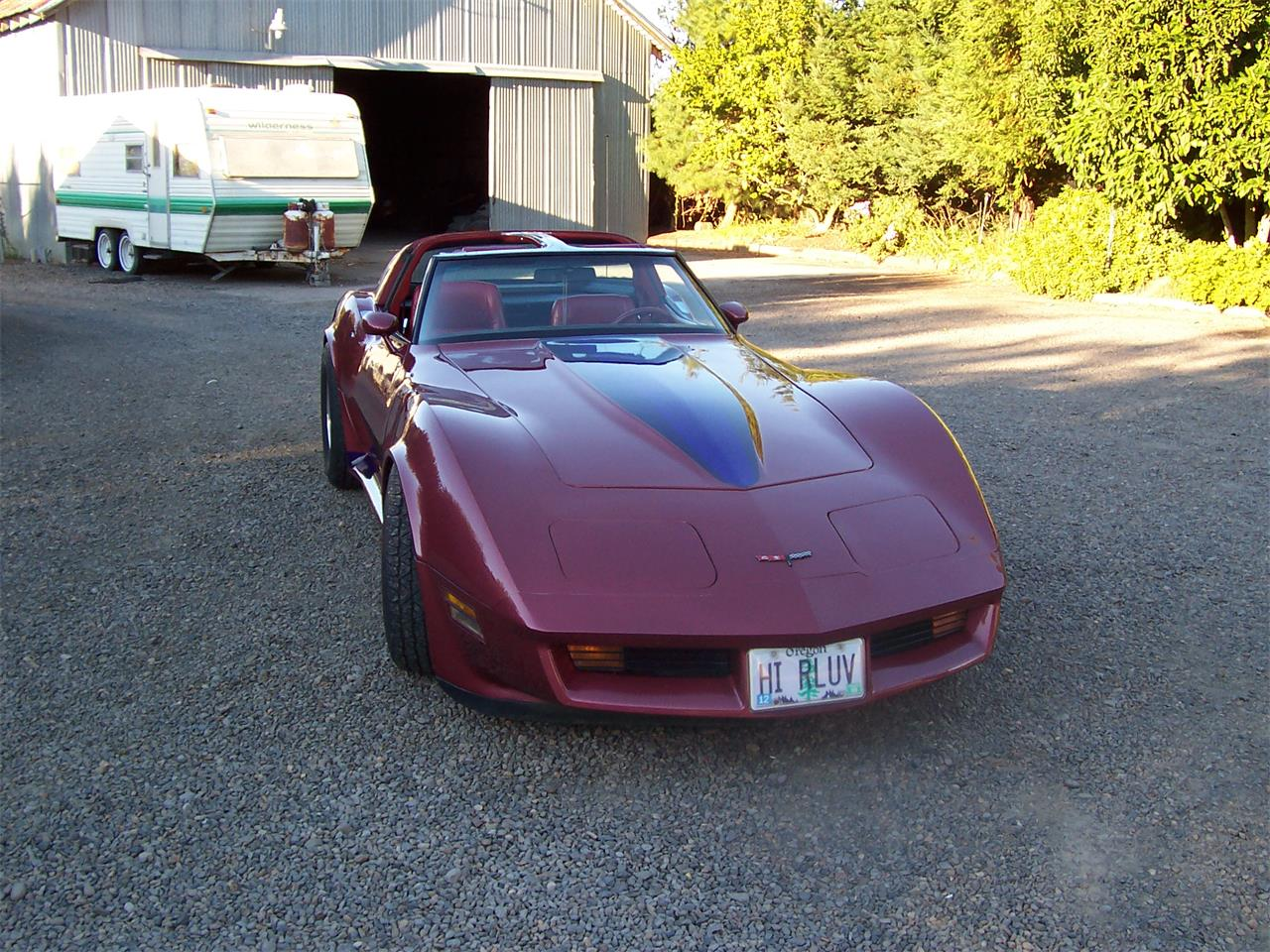Large Picture of 1981 Chevrolet Corvette Offered by a Private Seller - MYXB