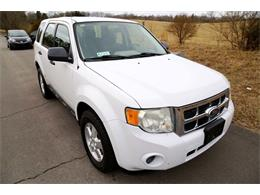Picture of '10 Escape - $3,400.00 - MYZ9