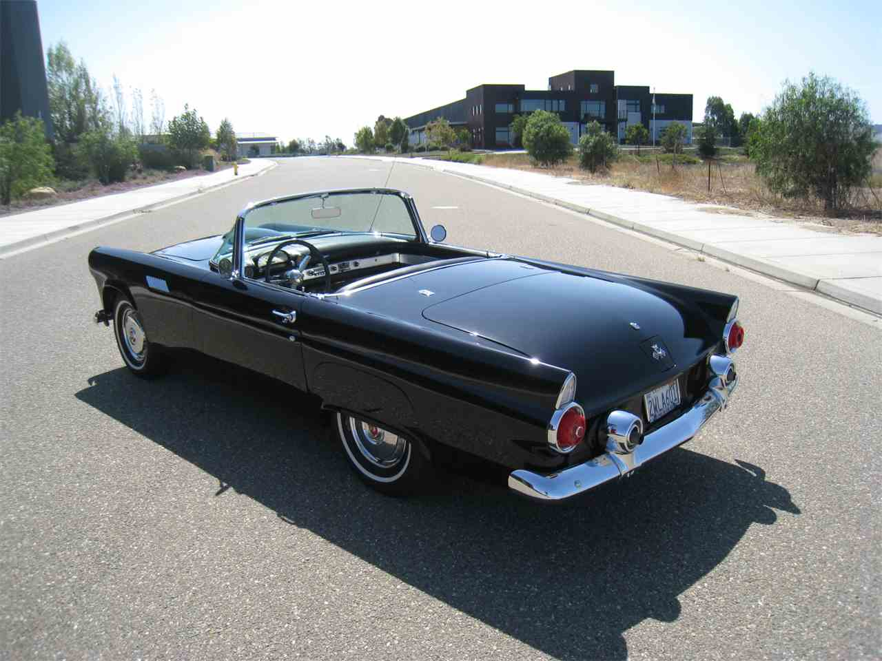 Large Picture of '55 Thunderbird - MZ5T