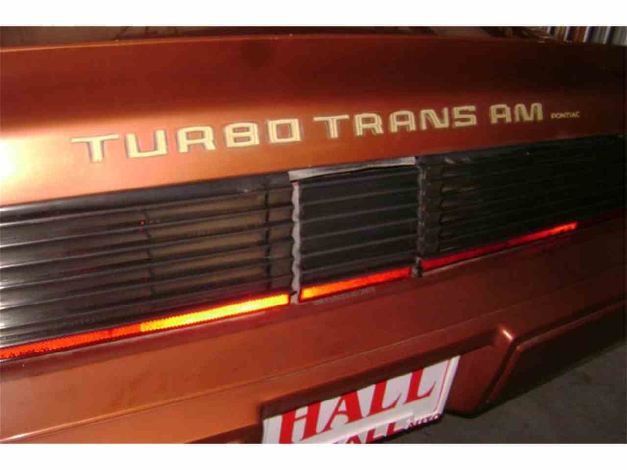 Large Picture of '80 Pontiac Firebird Trans Am - MZB3