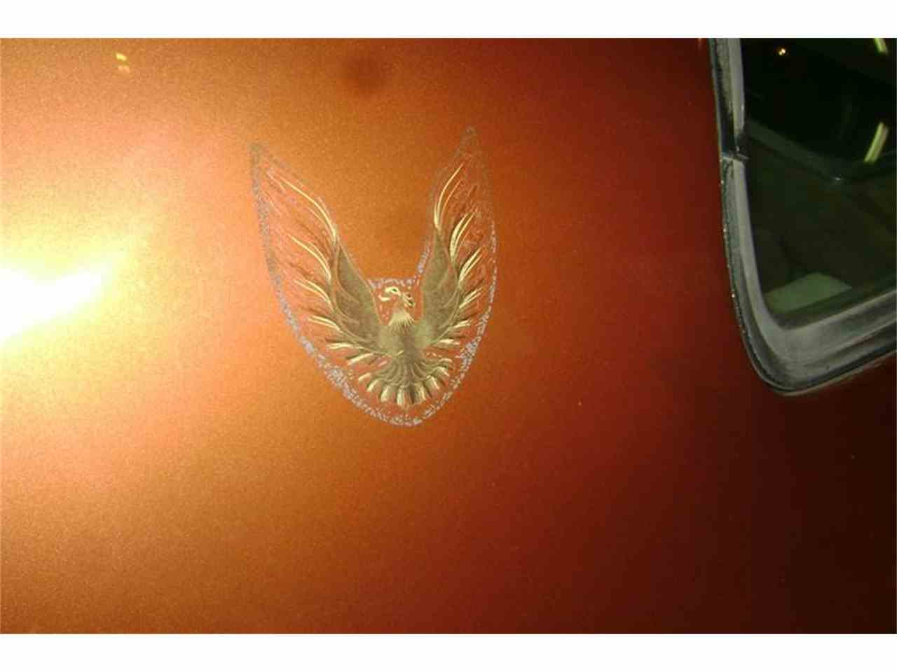 Large Picture of '80 Firebird Trans Am located in Oregon Offered by Cool Classic Rides LLC - MZB3