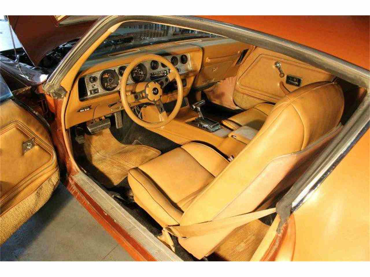 Large Picture of 1980 Pontiac Firebird Trans Am - $9,500.00 - MZB3
